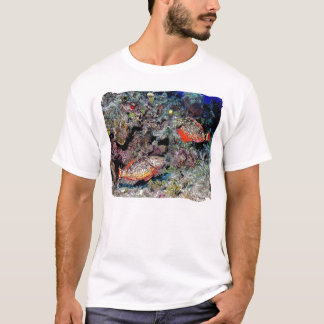 red parrotfish T-Shirt