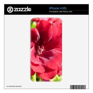 Red Passion Decals For iPhone 4