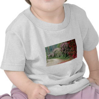 Red Path Of Rhododendron flowers Tee Shirts