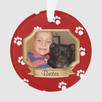 Red Paw Prints Pet Photo