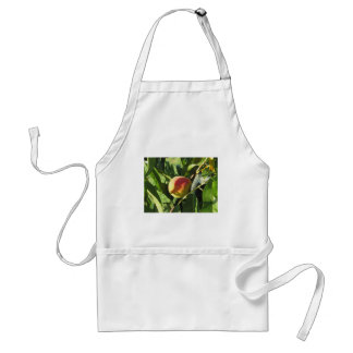 Red peaches on tree branches in a cultivated land adult apron