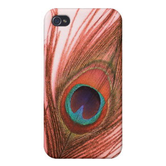 Red Peacock Feather iPhone 4/4S Cover