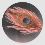 Red Peacock Feather on Black Round Stickers