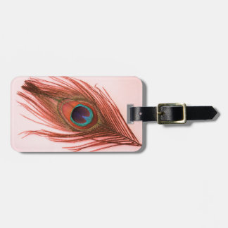 Red Peacock Feather on Pink Luggage Tag