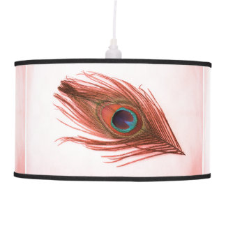 Red Peacock Feather on White Ceiling Lamp