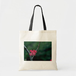 Red Pearls Budget Tote Bag