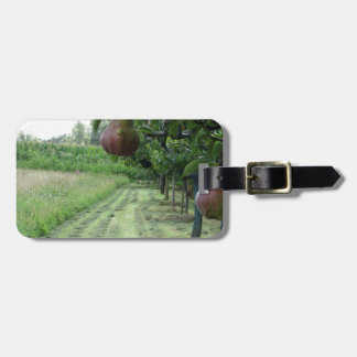 Red pears on tree branches tag for bags