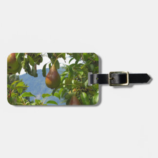 Red pears on tree branches tag for luggage