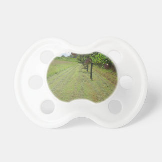 Red pears on tree branches pacifier