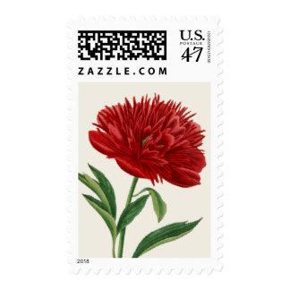 Red Peony Stamp