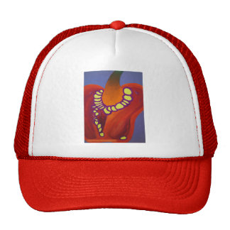 Red Pepper Hat