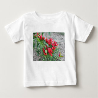Red peppers hanging on the plant baby T-Shirt