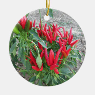 Red peppers hanging on the plant ceramic ornament