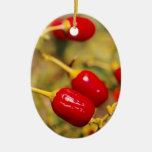 Red Peppers Ornament