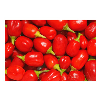 Red Peppers Photo Print