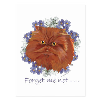 Red Persian Cat Forget Me Not Postcard