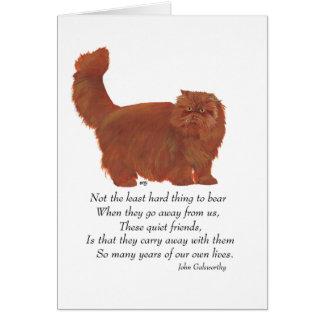 Red Persian Cat Rainbow Bridge Card