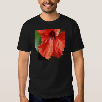Red Petal and Anther with Pistil of Hibiscus Flowe T-Shirt