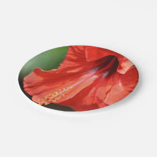 Red Petal and Anther with Pistil of Hibiscus Paper Plate  sc 1 st  Zazzle & Hibiscus Petals Plates | Zazzle