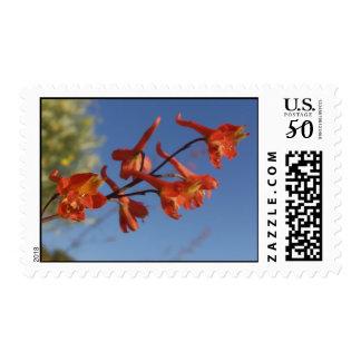 Red petals Blue skies Postage