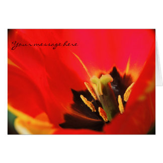 Red Petals Is Like Flames To A Fire Greeting Card