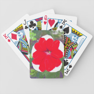 Red Petunia Bicycle Playing Cards