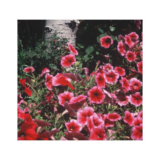 Red Petunias and Aspen wrapped Canvas