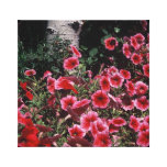 Red Petunias and Aspen wrapped Canvas Canvas Print
