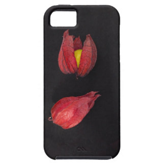 Red Physalis iPhone 5 Case