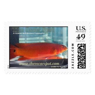 Red Pike Cichlid Postage Stamp