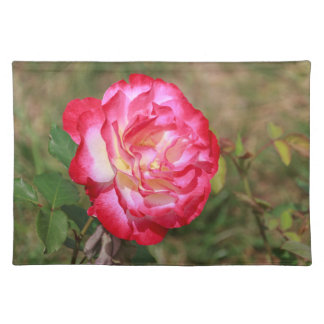 Red, Pink and White Rose Placemat