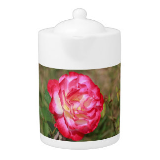 Red, Pink and White Rose Teapot