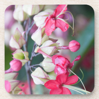 Red Pink and White Tropical Flowers Drink Coaster