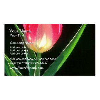 Red Pink Beauty Tulip, (Tulipa Gesneriana) flowers Business Card