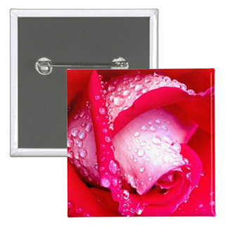 Red/Pink Dew-Kissed Rose 2 Inch Square Button