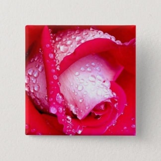 Red/Pink Dew-Kissed Rose Pinback Button