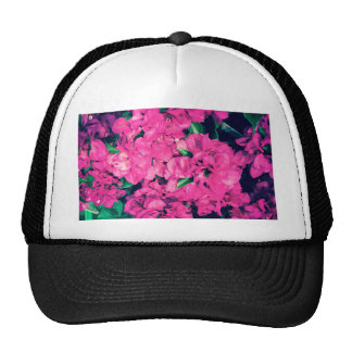 red pink purple flowers hat