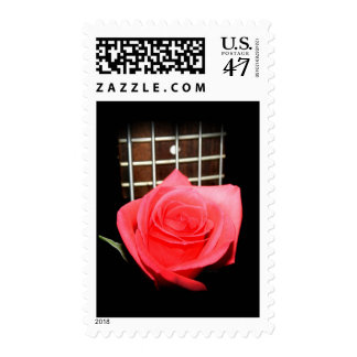 Red pink rose against five string bass fret board postage stamp
