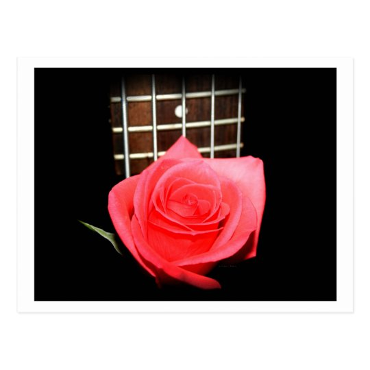 Red pink rose against five string bass fretboard postcard