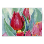 Red & Pink Tulips Cards