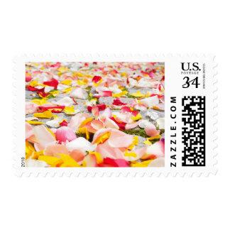Red, Pink, & White Wedding Rose Petals Stamp