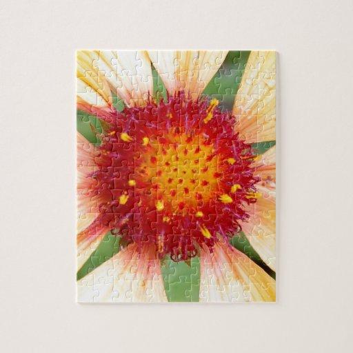 Red-pistil-of-a-flower114 PISTIL AMARILLO ROJO CLO Puzzle