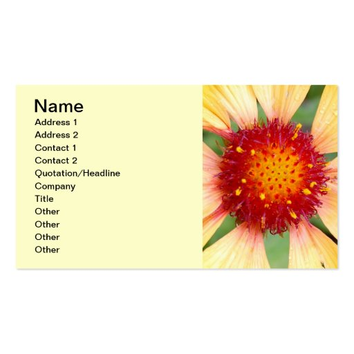 Red-pistil-of-a-flower114 RED YELLOW PISTIL CLOSEU Double-Sided Standard Business Cards (Pack Of 100)