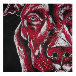 Red Pitbull Poster