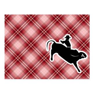 Red Plaid Bull Rider Postcard