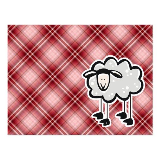 Red Plaid Sheep Postcard