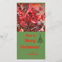 Red plant Christmas Card
