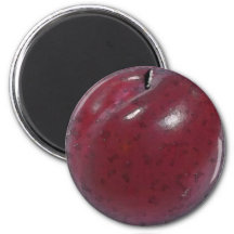 Red Plum Watercolor - Magnet
