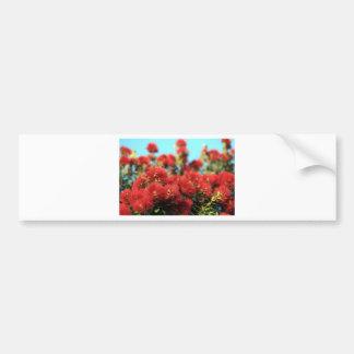 Red Pohutukawa tree summer flowers Bumper Sticker