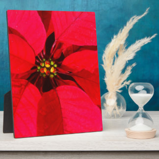 Red Poinsettia Easel Display Plaque